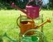 Sommerzeit – Richtig Wässern