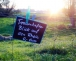 Gärtnerische Dienstleistungen – Steuervorteile ausgenutzt?